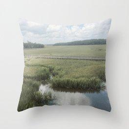 Peaceful Marshy Meadow Throw Pillow