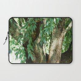 Summer Time Tree Laptop Sleeve