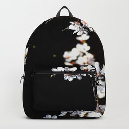 Breathtaking Branch Of Japanese Apricot. White Flowers, Black Background Backpack