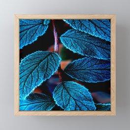 Peacock Blue Leaves Nature Background #decor #society6 #buyart Framed Mini Art Print