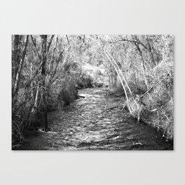 Dividing line Canvas Print