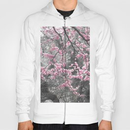 Under The Redbud Tree Hoody