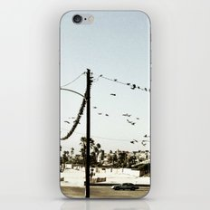 The birds. iPhone & iPod Skin
