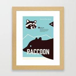 Wildlife of North America: Raccoon Framed Art Print
