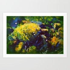 Honu Art Print