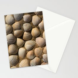 The World of Shells Stationery Cards