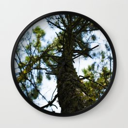 Pine in the Sky Wall Clock
