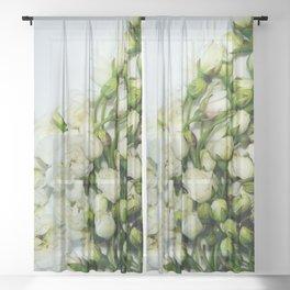 tiny white flowers Sheer Curtain