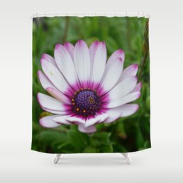 Pretty Purple Tips Shower Curtain