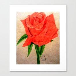 Rose by Saribelle Rodriguez Canvas Print