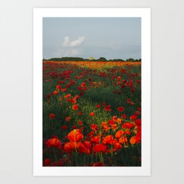 Church and field of red poppies in evening light. Holme Hale, Norfolk, UK Art Print