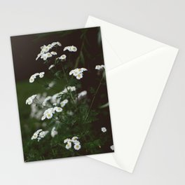 Wild Flower Stationery Cards