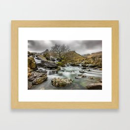 Lone Tree On The River Framed Art Print