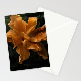 Malvaceae Orange Hibiscus Bush Stationery Cards
