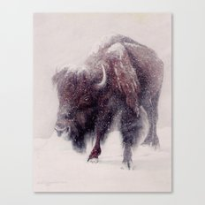 Buffalo Blizzard painting Canvas Print