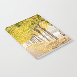 Walking under the trees in Autumn I Notebook