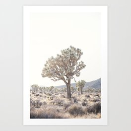 Joshua Light Art Print