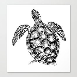 Sea turtle print in black and white Canvas Print