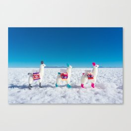 Llamas on the Bolivia Salt Flats Canvas Print