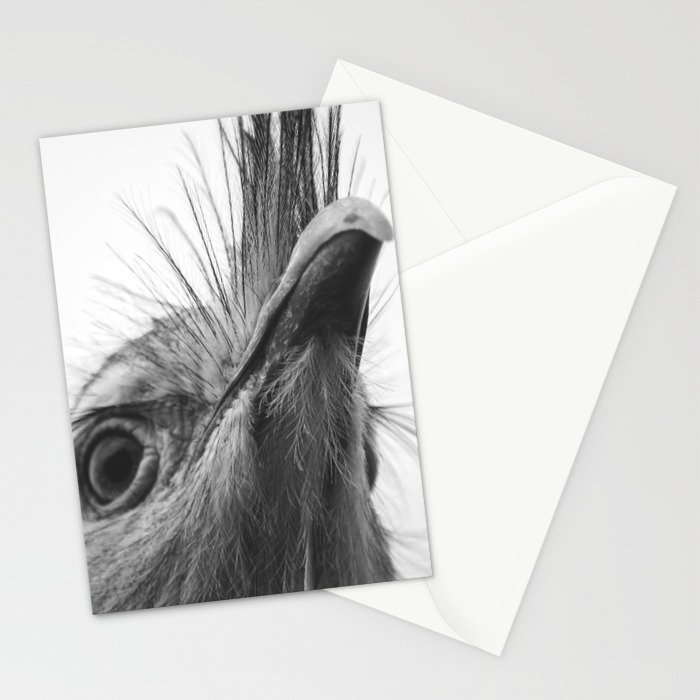 Seriama I Stationery Cards