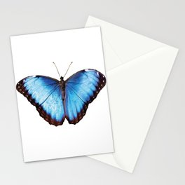 Morpho one big blue Butterfly Stationery Cards