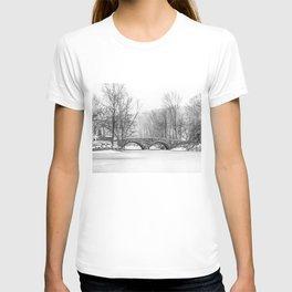 Stone Bridge Clove Lake Park T-shirt