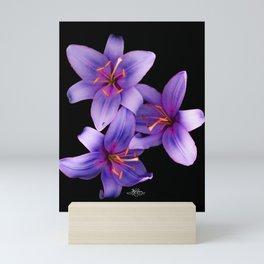 Beautiful Blue Ant Lilies, Flowers Scanography Mini Art Print