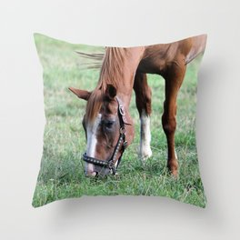 Brown Horse in Field Throw Pillow