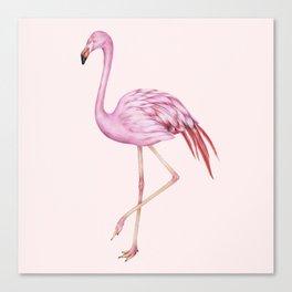 Blush Pink Watercolor Flamingo Art Canvas Print