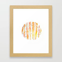Glowing Birches Framed Art Print