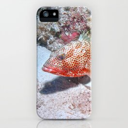 Red Hind iPhone Case
