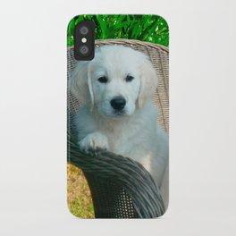 White Golden Retriever Dogs Sitting in Fiber Chair iPhone Case