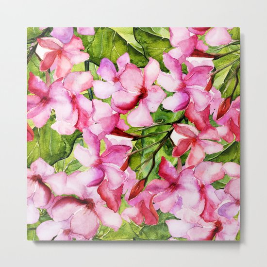 Aloha-my tropical pink oleander flower garden Metal Print