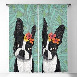 Tropical Boston Terrier Girl Blackout Curtain