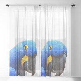 Blue Parrot Portrait Sheer Curtain