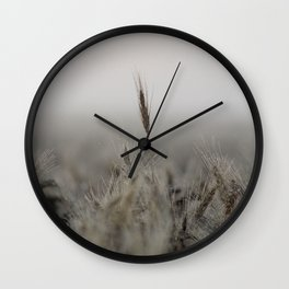Tall Wheat in the Field Wall Clock
