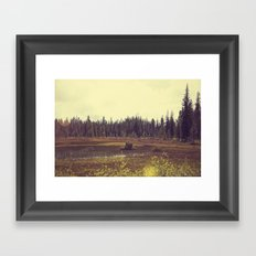Four Mile Meadow 01 Framed Art Print