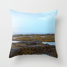 Tidal Shelf and the Fog Throw Pillow