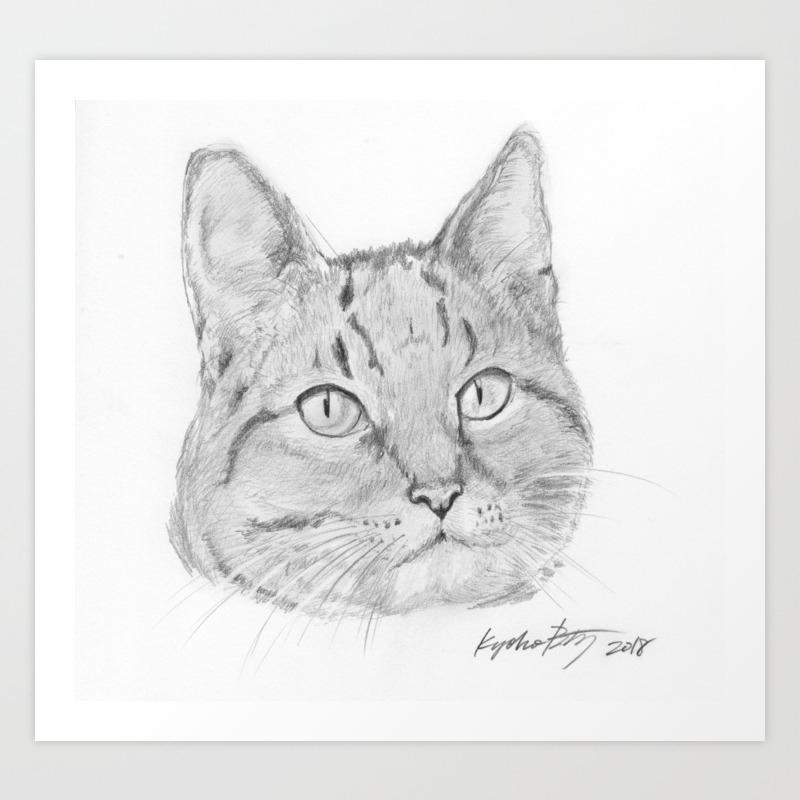 Cat face realistic pencil sketch drawing art print