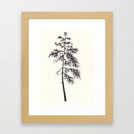 Black ink forest: Pine tree Framed Art Print