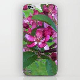 Profusion Crabapple 2 iPhone Skin