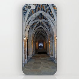 Archway Of Beauty iPhone Skin