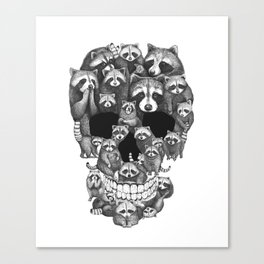 Skull from raccoons Canvas Print