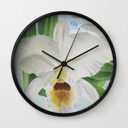 White orchid Cattleya Gaskelliana Wall Clock