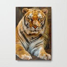 Tiger Art Metal Print