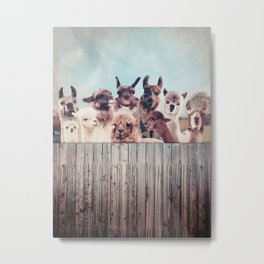 NEVER STOP EXPLORING - HAPPY FAMILY - ALPACA & LLAMA Metal Print