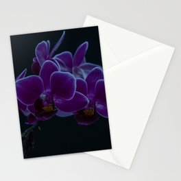 Orchid Blooms Stationery Cards