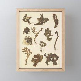 Copper Formations Framed Mini Art Print