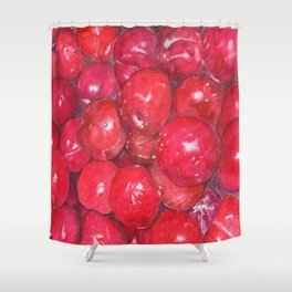 A basketful of plums Shower Curtain