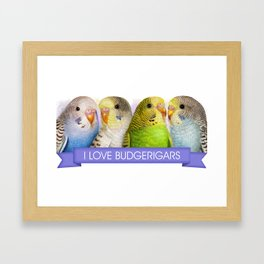 I Love Budgerigars Realistic Painting Framed Art Print